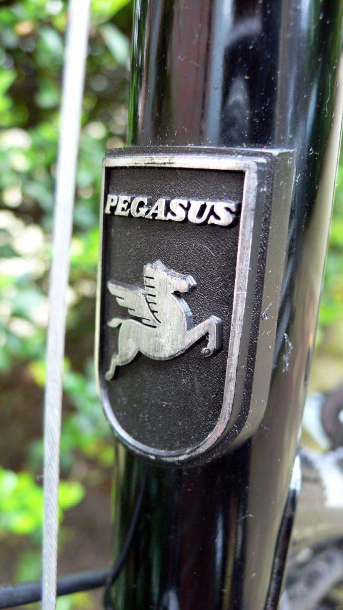 Pedro ist ein Pegasus-Rad