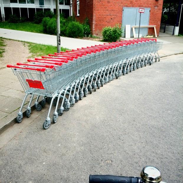 Wilde Einkaufswagen in Hamburg Meiendorf